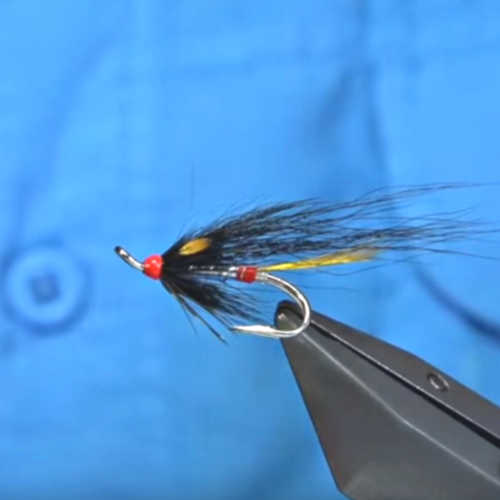 Executioner Fly for Salmon
