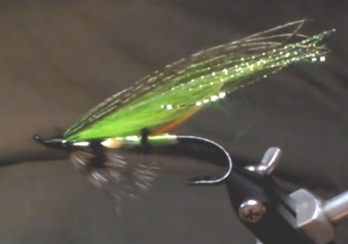 Hairwing Fly a Classic Salmon Fly
