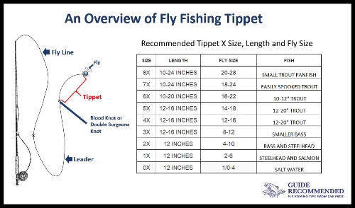 Hook Size and Tippet