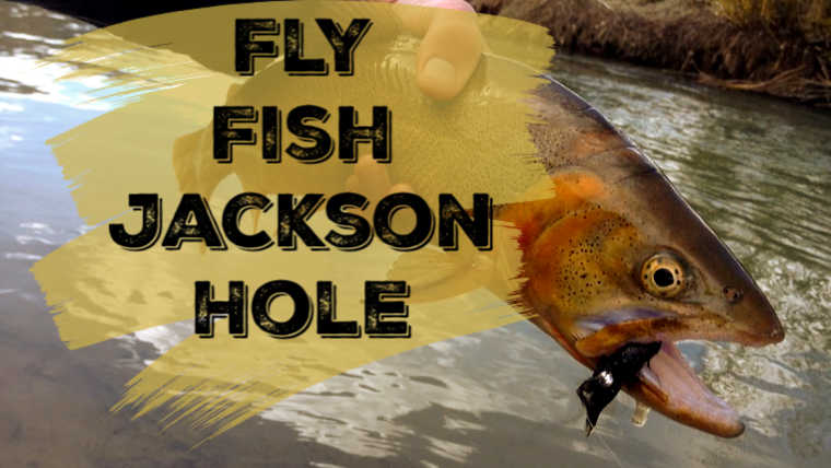 15 Best Places to Fish in Jackson Hole, WY: Maps Included