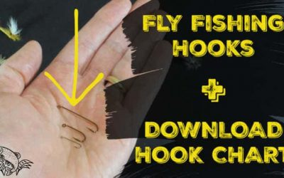 Understanding Fly Fishing Hooks (Size Charts and PDF)