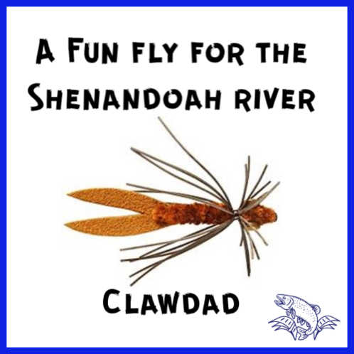 Clawdad fly for the Shenandoah River, Virginia