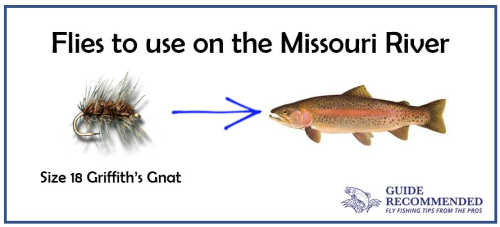 Griffith's Gnat for the Missouri River in June