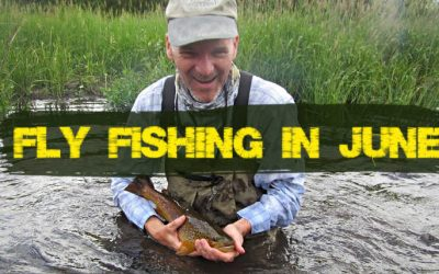 7 Best Places to Fly Fish in June (Maps, Flies and More)