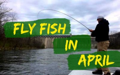 7 Best Places to Fly Fish in April (Maps Included)