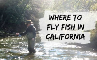 15 Best Places to Fly Fish in California: MAPS Included