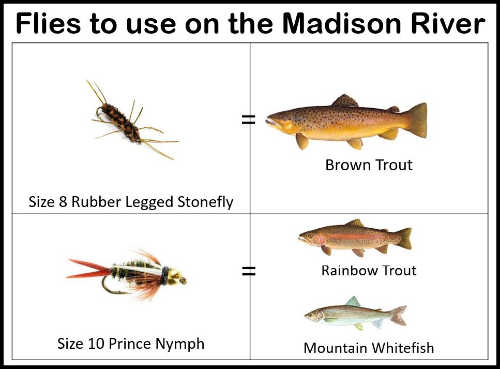 Best Flies to the Madison River in May