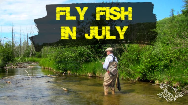 7 Best Places to Fly Fish in July (Maps, Flies and More)