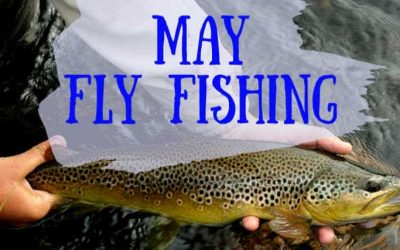 7 Best Places to Fly Fish in May (Maps, Flies and More)
