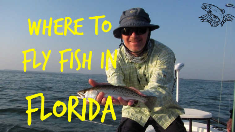 9 Best Places to Fly Fish in Florida (MAPS Included)