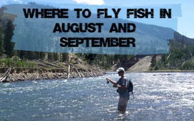 7 Best Places to Fly Fish in August & September (Maps, Flies and More)