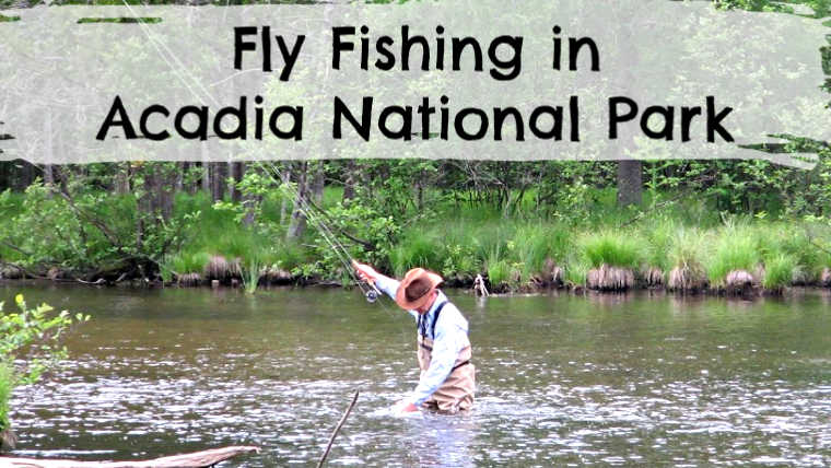 7 Best Places to Fly Fish in Acadia National Park