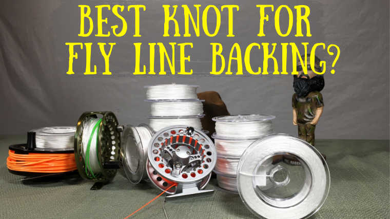 Best Knot for Fly Line Backing to Reel