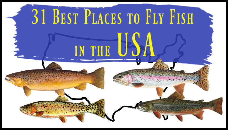 31 Best Places to Fly Fish in the USA (Maps, Flies and More)