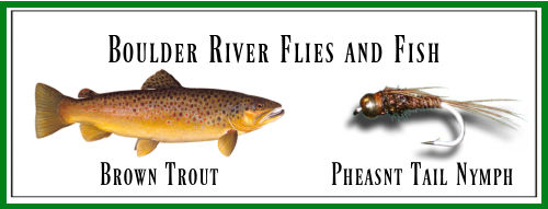 Boulder River Flies and Trout