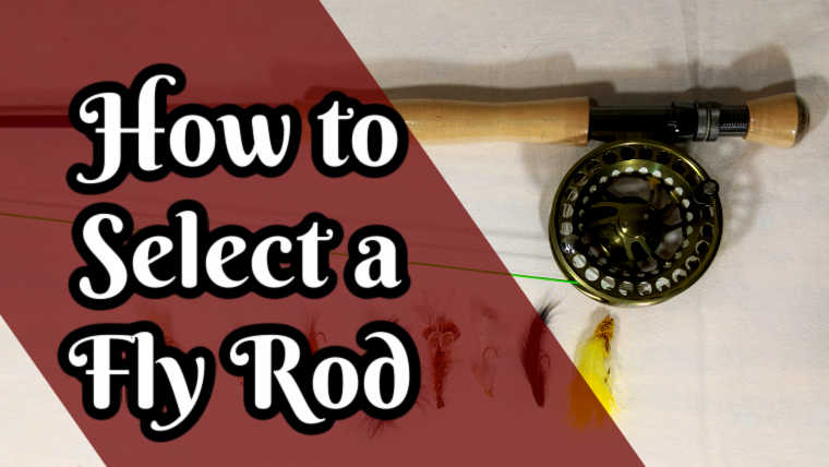 How to Select a Fly Fishing Rod: [A Complete Guide]