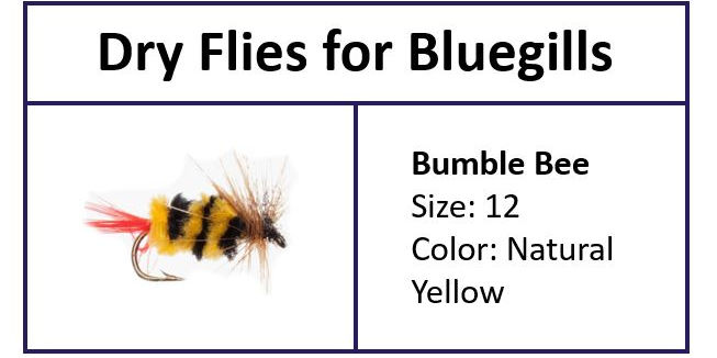 Bumble Bee to Fly Fish Bluegill