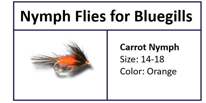 Carrot Nymph for Bluegill
