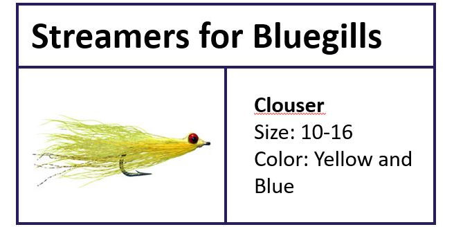 Clouser for Bluegills