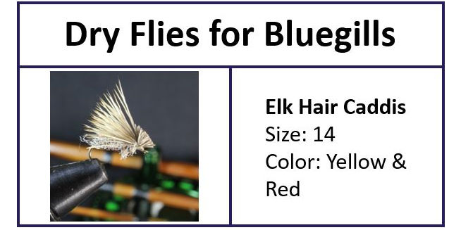 Elk Hair Caddis a GREAT Bluegill Fly