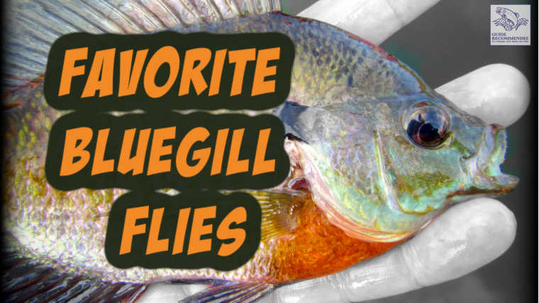 Favorite Bluegill flies