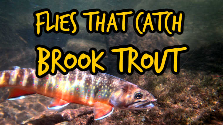 Flies For Brook Trout
