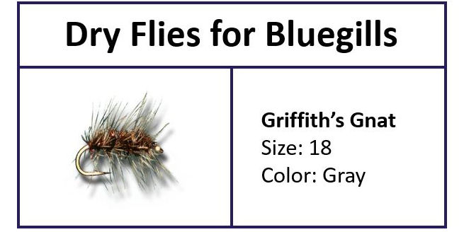 Griffith's Gnat to Fly Fish Bluegills