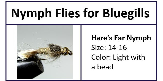 Hare's Ear Nymph for Bluegills
