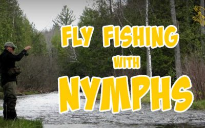 How to Fly Fish with Nymphs (Setup, Flies and Techniques)