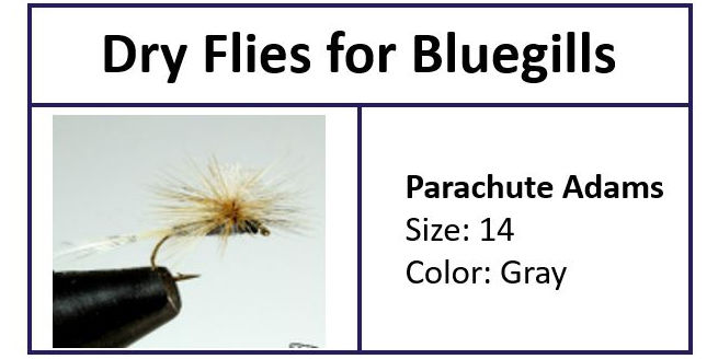 Parachute Adams a MUST have Fly for Bluegills