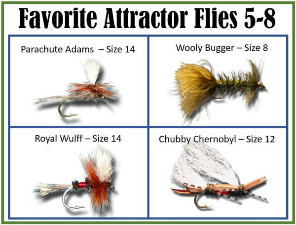 Attractor Flies 5 - 9