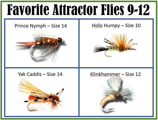 Attractor Flies 9 - 12