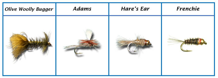 Favorite Brook Trout Flies 9 - 12