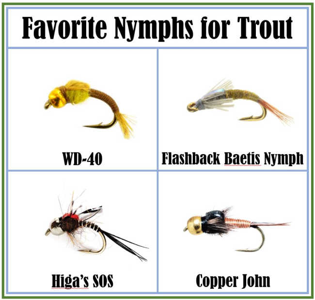 Favorite-Nymphs-wd40-copper-john-flashback
