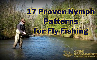 The Best Nymph Flies for Trout (17 Proven Patterns)