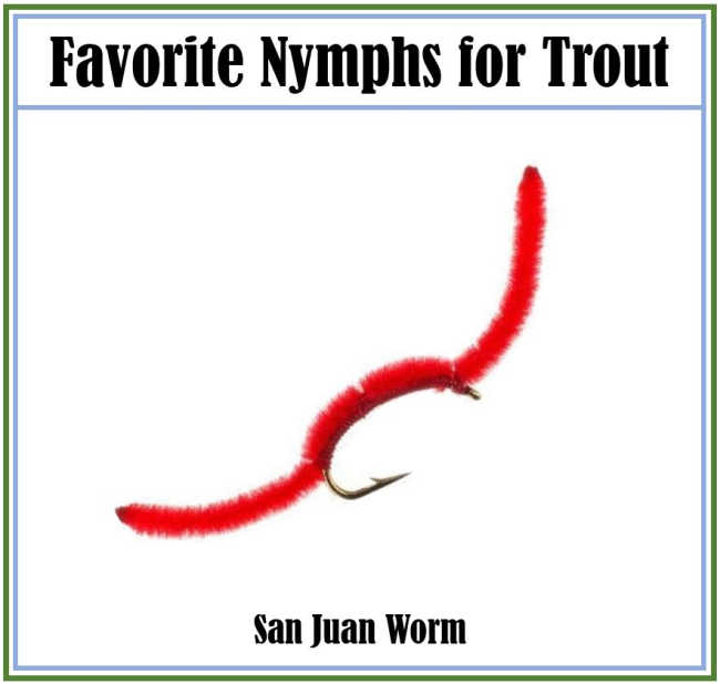 San Juan Worm Nymph
