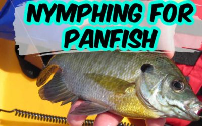 Successful Nymphing For Panfish (Setup, Flies and Video)