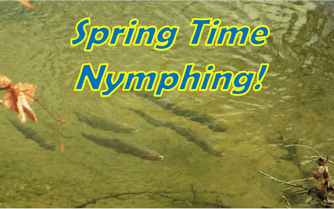 Spring Time Nymphing