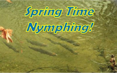 Spring Fly Fishing Tips Using Nymphs