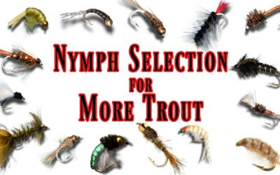 How to Choose the Right Nymph & Catch More Trout!