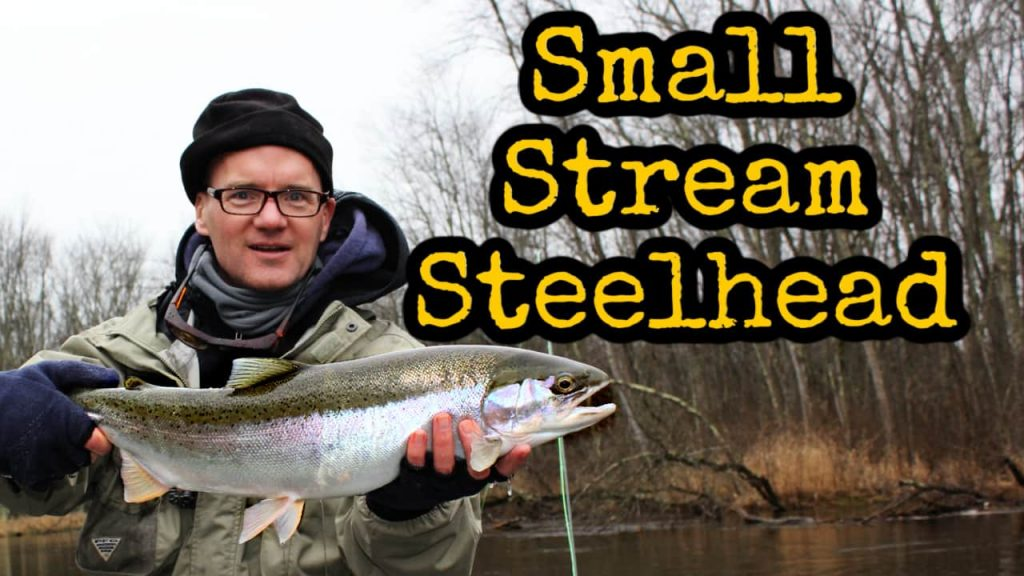 Fly Fish for Steelhead