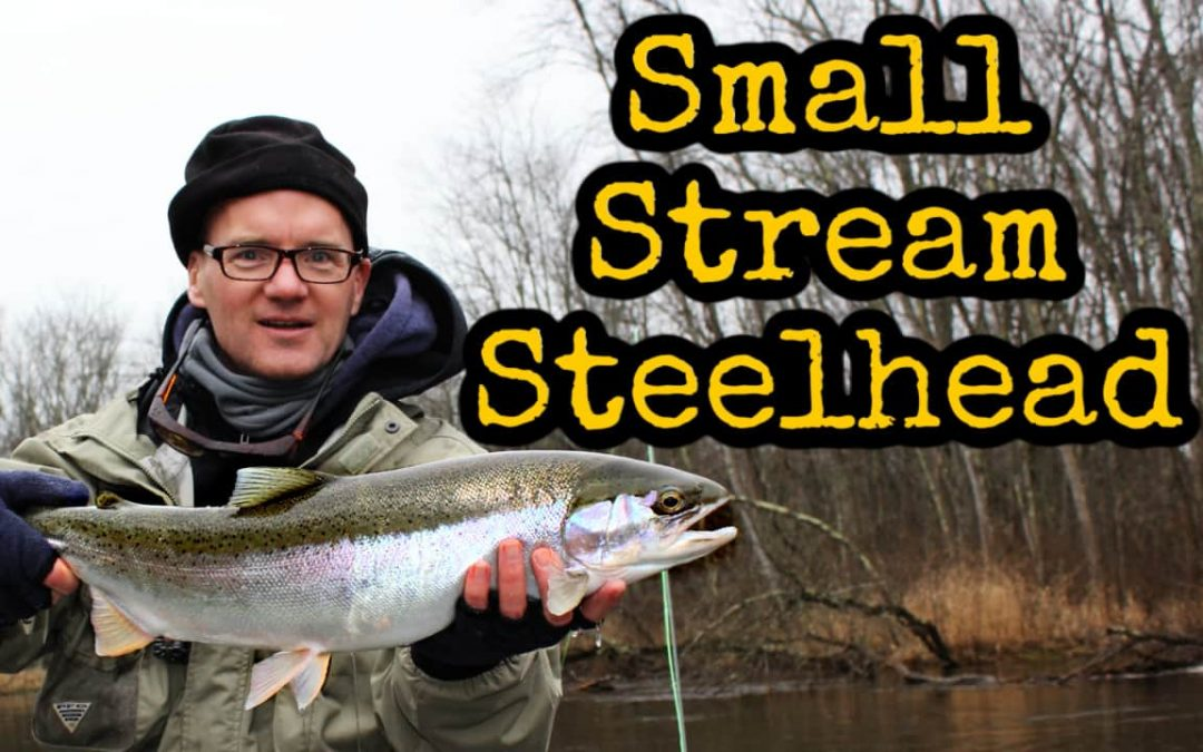 How to Fly Fish for Steelhead in Small Streams