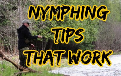 15 Awesome Nymph Fishing Tips [That Really Work]