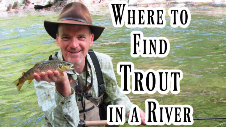 Where to Find Trout in a River and Stream (Mystery Solved)