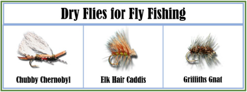 Dry Flies for Fly Fishing