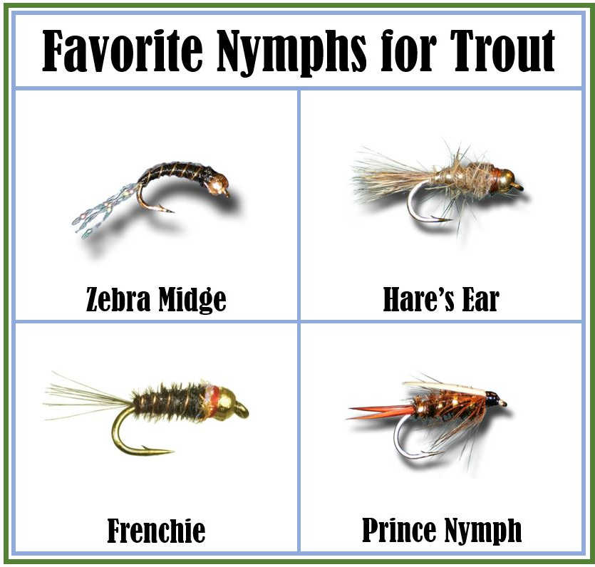 Favorite Nymphs for Trout