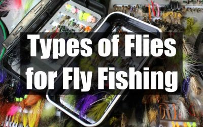 What are the Different Types of Flies in Fly Fishing [12 Proven Flies]