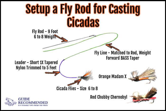 Fly Rod Setup for Cicadas