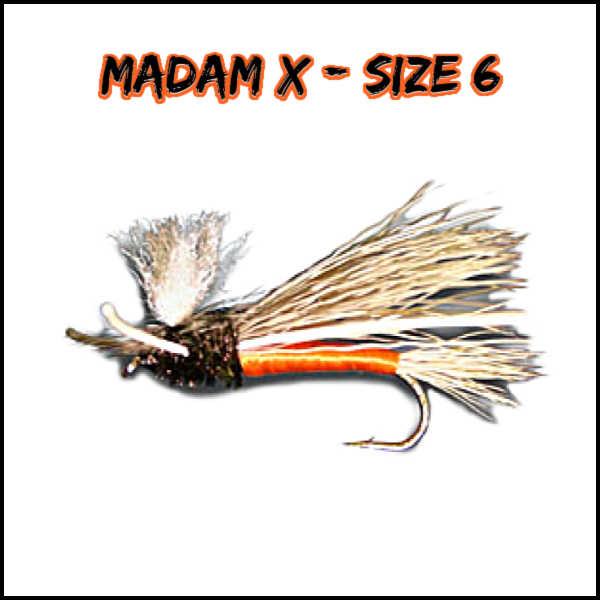 Madam X Fly