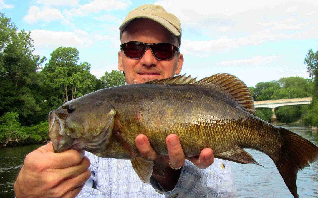 Fly Rod for Bass